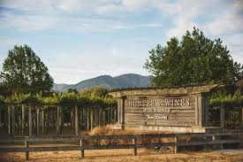 hunter u0027s cellar door marlborough wine blenheim nz