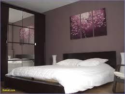 chambre adulte decoration couleur de peinture pour chambre adulte chambre idées de