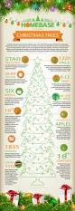 xmas infographic christmas lessons pinterest trees