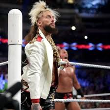 enzo weight enzo height weight age biceps size stats