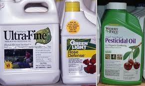 Insecticide For Vegetable Garden by Horticultural Spray Oils Pacific Northwest Pest Management Handbooks