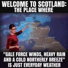 Funny Scottish Memes - scottish humour home facebook