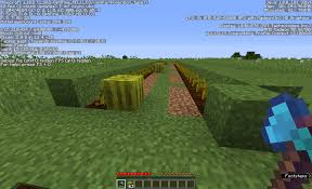 15 Bookshelves Minecraft Minecraft Are There Any Advantages To Having An Axe With Silk