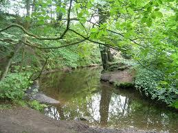 River Yarrow