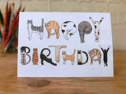 In Birthday Card Best 25 Cat Birthday Cards Ideas On Pinterest Owl Punch Cards