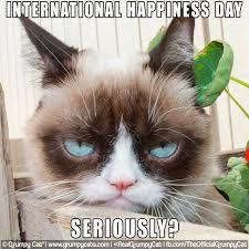 Grumpy Cat Snow Meme - speak of the devil a day in the life of a cat