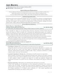 resume templates 2015 free download template it professional resume template