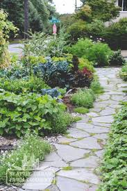 gardening with native plants 9 best edible landscape design by seattle urban farm co images