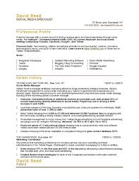 Web Content Manager Resume Social Media Manager Resume Sample Online Marketer And Social