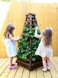 Planters On Wheels by Amazon Com Earth Tower Vertical Garden 4 Sided Wooden Planter On