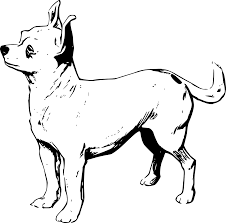 chihuahua coloring pages printable chihuahua coloring pages