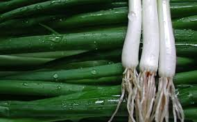 what is a spring onion secretly healthy