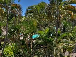 puri kelapa garden cottages hotels book now