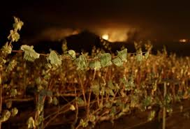 Wildfire Carson Wa by The Latest On California Wildfires Death Toll At 23