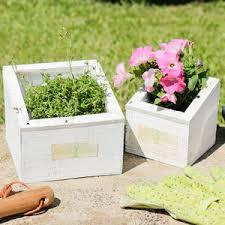 windowsill plant pots