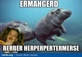 Ermahgerd Animal Memes - animal memes ermahgerd