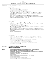 sle resume templates accountants compilation report income sales use tax resume sles velvet jobs