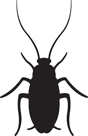 cockroach clipart clipground