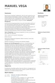 Sales And Marketing Resume Examples by Director Of Sales U0026 Marketing Resume Samples Visualcv Resume