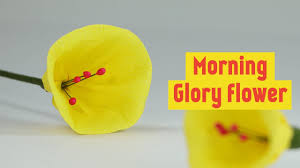 how to make crepe duplex paper flowers morning glory flower