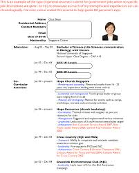 Resume For Writing Job by Cv U0026 Resume Writing Job Hunter U0027s Guide