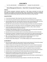 It Executive Resume Examples by 48 Best Best Executive Resume Templates U0026 Samples Images On