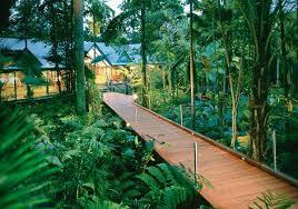 Treehouse Europe - treehouse hotel in australia silky oaks lodge tree house