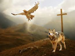 other heaven mountain eagle wolf photos hd 16 9 high