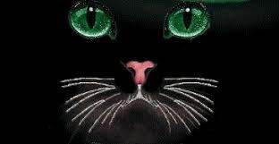 Lo que todo gato quiere  (Harry styles y tu) TERMINADA Images?q=tbn:ANd9GcQEJ9gPYjexFwh0myjMui7jd322IcpG4nnXFMHNV3V4RYErOdJpnA