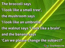 tree quotes cool quotes
