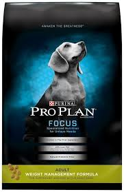 3569 best Dog Food images on Pinterest