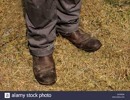dirty riding boots dirty boots stock photos dirty boots stock images alamy