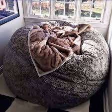nice design ideas for fuzzy bean bag chair 17 best ideas about