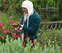 the medieval gardener watering in the trellis herber at the