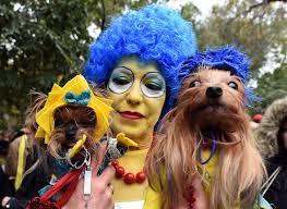 Marge Halloween Costume Halloween 2015 Pet Costume Ideas York U0027s Tompkins Square
