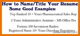 What Should Resume Title Be Sample Resume Title Cbshow Co