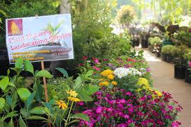 the flower market battaramulla yamu