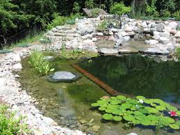 118 best backyard water features images on pinterest garden