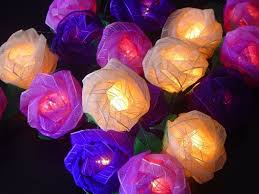 Rose Lights String by Old English Purple Mixed Colour Rose Fairy Light String Amazon Co