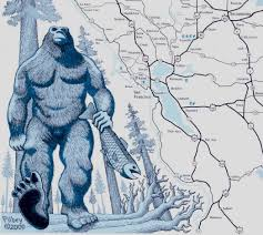 Bigfoot Sightings Map Bigfoot Country Touring Map Of Northern California Bob Filbey