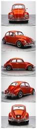 860 best v dub bugs images on pinterest vw bugs volkswagen