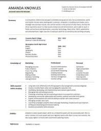 homey inspiration resume summary examples entry level 1 templates