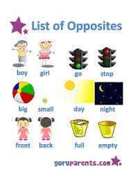 29 best miscellaneous images on pinterest preschool activities
