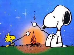 camping peanuts snoopy u0026 woodstock on one 16