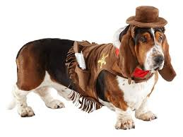 Halloween Costumes Dogs 115 Pet Friendly Halloween Costumes Images