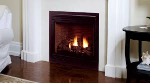 Fireplace Inserts Seattle by Fireplaces First Source Gas Appliances 904 225 5754