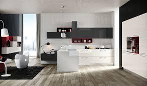 modern kitchen design cupboard colours kitchen designs that pop