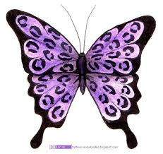 14 best purple butterfly images on purple