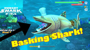 Hungry Shark Map Hungry Shark Evolution Map Keywords And Pictures