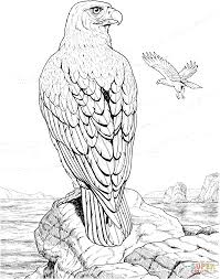 eagle perched on a rock coloring page free printable coloring pages